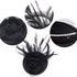 AGF00212 - Black Feather & Flower Mesh Hat Fascinator