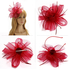 AGF00217 - Wine Red Feather & Mesh Hair Fascinator
