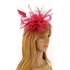 AGF00218 - Wine Red Feather & Flower Mesh Fascinator