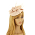 AGF00225 - Nude Feather & Flower Hair Fascinator