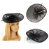 AGF00226 - Black Mesh Hat Feather Fascinator