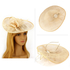 AGF00226 - Nude Mesh Hat Feather Fascinator