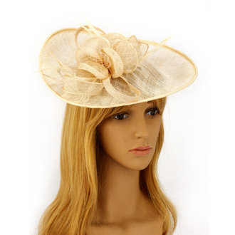 anna grace Mesh Hat Feather Fascinator