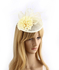 AGF00233 - Ivory Feather & Flower Mesh Hat Fascinator