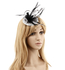 AGF00236 - Light Grey / Black Flower Mesh Hat Feather Fascinator