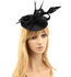 AGF00239 - Black Flower Mesh Feather Hat Fascinator