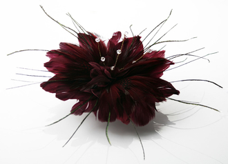 LSH0061 - Red Feather Fascinator