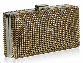 LSE00190- Wholesale & B2B Champagne Evening Clutch Supplier & Manufacturer